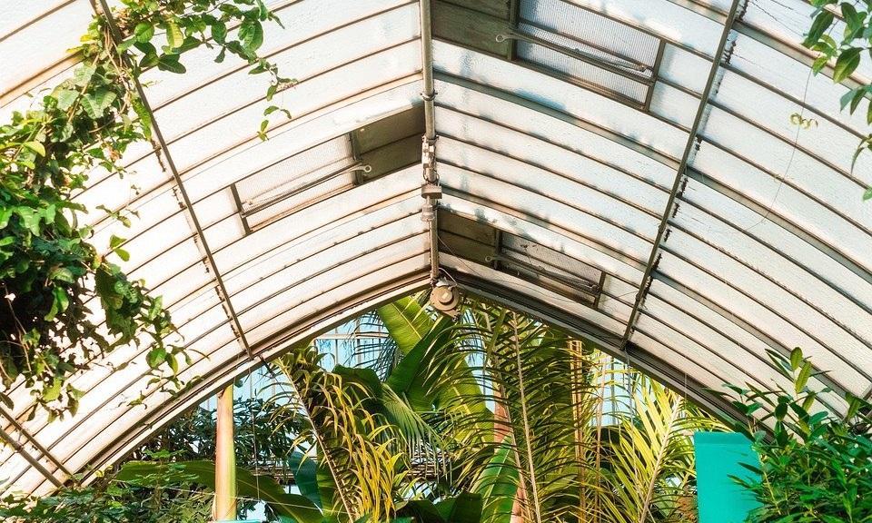 Mengenal Atap Polycarbonate dan Keunggulannya